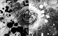 Black Flowers Lyrics 17 Cool Wallpaper