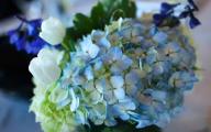 Blue Flowers For Wedding 32 Desktop Background