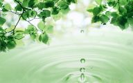 Green Flowers Hd 21 Free Wallpaper