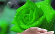 Green Flowers Hd 22 Widescreen Wallpaper