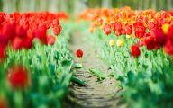 Green Flowers Hd 5 Cool Wallpaper