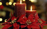 List Of Red Flowers 6 Widescreen Wallpaper