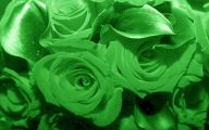 Pictures Of Green Flowers 34 Background Wallpaper