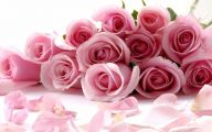 Pink Flowers Meaning 28 Free Hd Wallpaper
