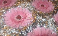 Pink Flowers Types 9 Free Hd Wallpaper
