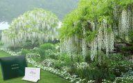 White Flower Farm Perennials 18 Free Wallpaper