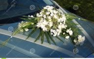 White Flowers For Wedding 21 Free Hd Wallpaper