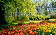 Yellow Flowers Of Spring Crossword 22 High Resolution Wallpaper
