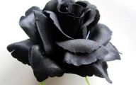 10 Black Flowers Artificial Desktop Wallpapers