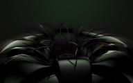 Black Flowers Names 8 Desktop Background