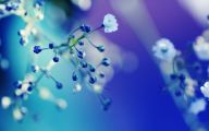 Blue Flowers Background 25 Free Wallpaper