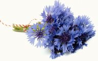 Blue Flowers Bouquet 2 High Resolution Wallpaper