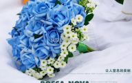 Blue Flowers Bouquet 21 Hd Wallpaper