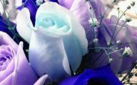 Blue Flowers Delivery 20 High Resolution Wallpaper