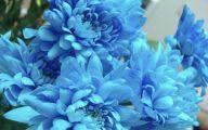 Blue Flowers Dr Octagon 20 Background Wallpaper