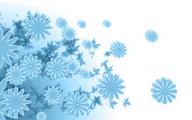 Blue Flowers Dr Octagon 30 Desktop Background