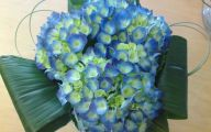 Blue Flowers Names For Weddings 24 Background