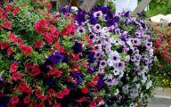 Flowers Green Bay 21 Widescreen Wallpaper