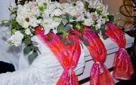 Flowers Green Bay 41 Free Hd Wallpaper
