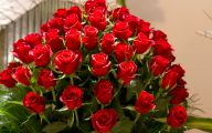Flowers Pictures Red Roses 32 Widescreen Wallpaper