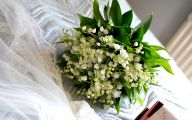 Green Flowers And Their Meanings 25 Cool Wallpaper