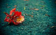 Green Flowers Tumblr 19 Free Wallpaper