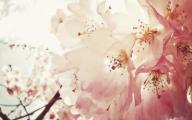 Green Flowers Tumblr 37 Widescreen Wallpaper