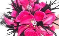 Live Black Roses  28 Desktop Background