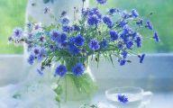 Lovely Blue Flowers  1 Desktop Background