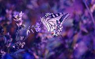 Lovely Lady Purple Flowers 17 Cool Wallpaper