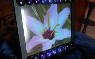 Lovely Lady Purple Flowers 35 Desktop Background