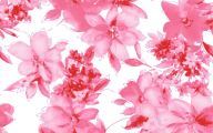 Pink Flowers Background 19 Hd Wallpaper