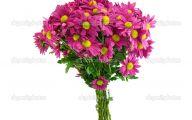 Pink Flowers Bouquet 14 Free Hd Wallpaper