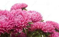 Pink Flowers Bouquet 4 Wide Wallpaper