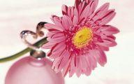 Pink Flowers Perfume 10 Desktop Background