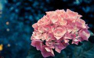 Pink Flowers Tumblr 15 Widescreen Wallpaper