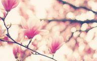 Pink Flowers Tumblr 26 Cool Wallpaper