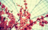 Pink Flowers Tumblr 4 High Resolution Wallpaper