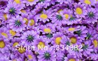 Purple Flowers Bulk 25 Cool Hd Wallpaper
