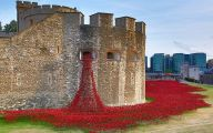 Red Flowers Around Tower Of London 1 Cool Hd Wallpaper