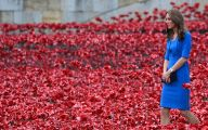 Red Flowers Around Tower Of London 28 Free Hd Wallpaper