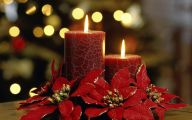 Red Flowers At Christmas 1 Background Wallpaper