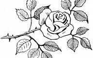 White Flower Boutique 37 Widescreen Wallpaper