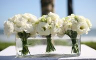 White Flowers Available In October 7 Cool Hd Wallpaper