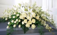 White Flowers For Funeral 25 Free Hd Wallpaper