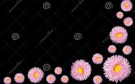 Yellow Flowers Black Center 19 High Resolution Wallpaper