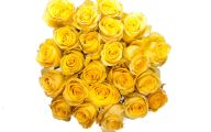 Yellow Flowers For Weddings 14 High Resolution Wallpaper