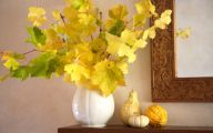 Yellow Flowers In Fall 31 Cool Hd Wallpaper