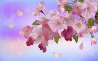 Apple Blossom 15 High Resolution Wallpaper
