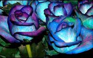 Blue Flowers Hd Wallpapers  8 High Resolution Wallpaper